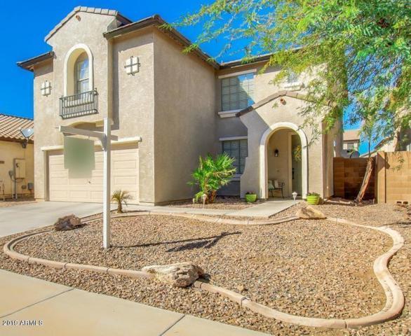 11828 W Via Montoya Drive, Sun City, AZ 85373 (MLS #5941628) :: Occasio Realty