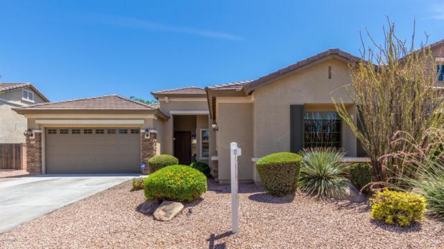 13511 W Merrell Street, Avondale, AZ 85392 (MLS #5941634) :: Occasio Realty