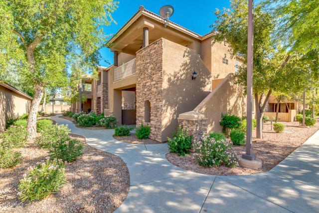 2155 N Grace Boulevard #110, Chandler, AZ 85225 (MLS #5941638) :: Occasio Realty