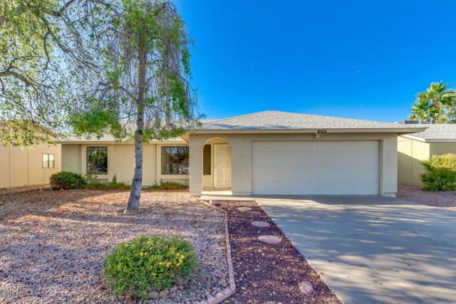 3116 E John Cabot Drive, Phoenix, AZ 85032 (MLS #5941647) :: The Bill and Cindy Flowers Team