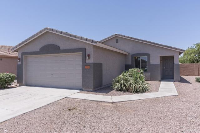 35302 N Aubrac Circle, San Tan Valley, AZ 85143 (MLS #5941661) :: Occasio Realty