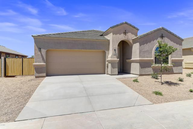 41328 W Curtis Lane, Maricopa, AZ 85138 (MLS #5941663) :: Lucido Agency
