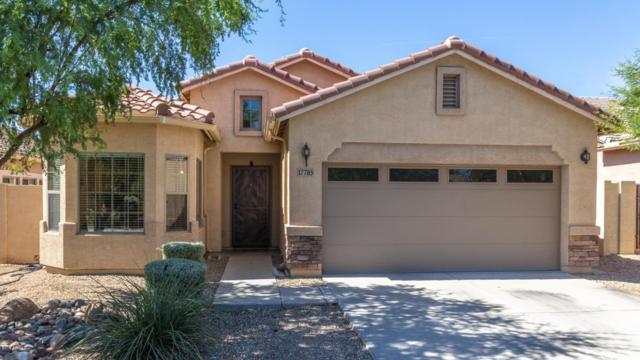 17785 W Paradise Lane, Surprise, AZ 85388 (MLS #5941667) :: Occasio Realty
