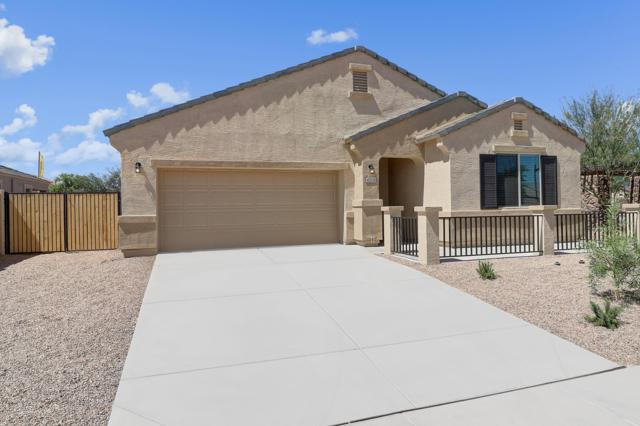 41308 W Curtis Lane, Maricopa, AZ 85138 (MLS #5941680) :: Lucido Agency
