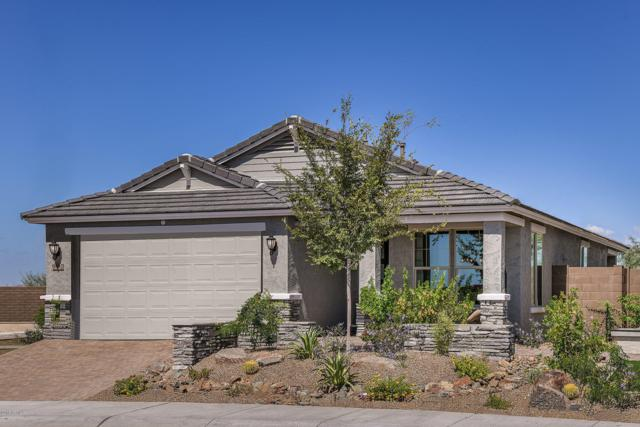 9582 W Cashman Drive, Peoria, AZ 85383 (MLS #5941686) :: The Kenny Klaus Team