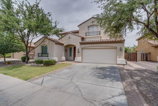 3626 E Lark Drive, Chandler, AZ 85286 (MLS #5941687) :: Occasio Realty
