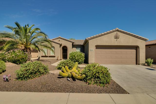 20900 N Canyon Whisper Drive, Surprise, AZ 85387 (MLS #5941697) :: Kepple Real Estate Group