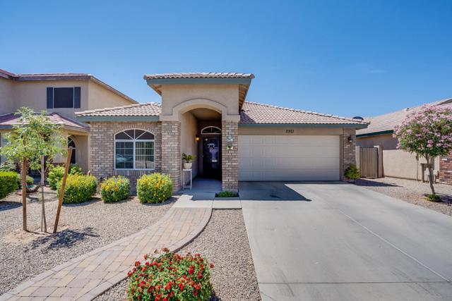 2921 W Chanute Pass, Phoenix, AZ 85041 (MLS #5941700) :: Occasio Realty