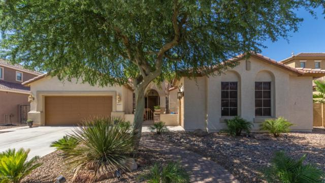 15044 W Campbell Avenue, Goodyear, AZ 85395 (MLS #5941710) :: Riddle Realty