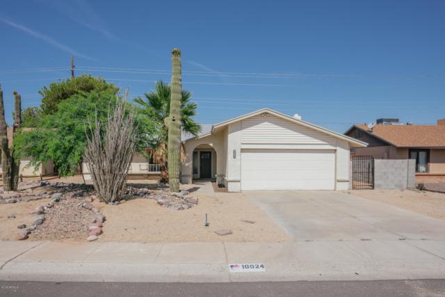 16624 N 34TH Drive, Phoenix, AZ 85053 (MLS #5941718) :: Occasio Realty
