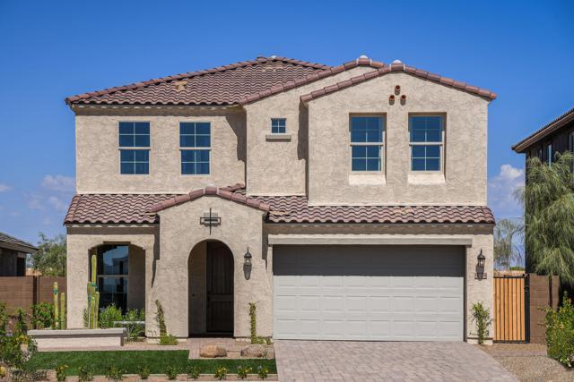 9578 W Cashman Drive, Peoria, AZ 85383 (MLS #5941727) :: Lifestyle Partners Team