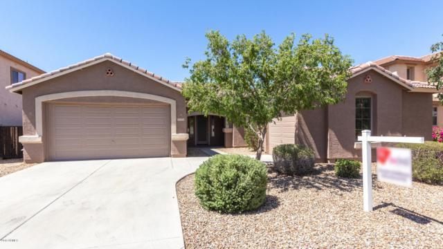 15056 W Minnezona Avenue, Goodyear, AZ 85395 (MLS #5941734) :: Riddle Realty