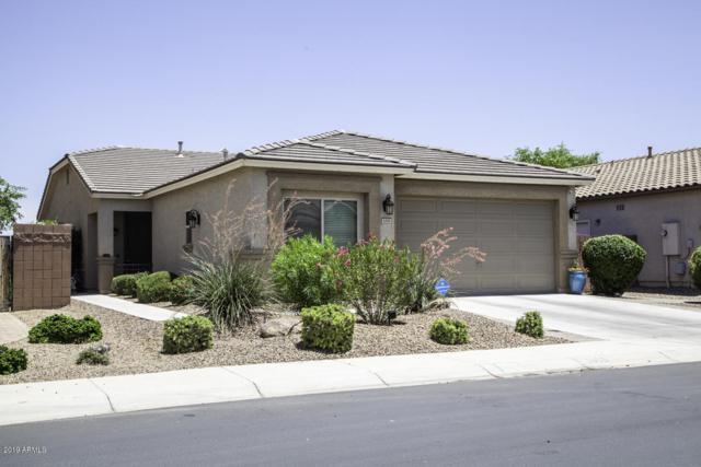 1008 W Heatherwood Street, San Tan Valley, AZ 85140 (MLS #5941760) :: Riddle Realty
