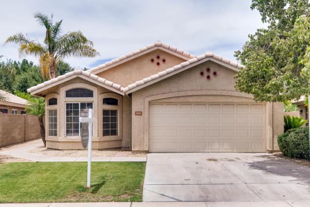 1700 W Orchid Lane, Chandler, AZ 85224 (MLS #5941768) :: Occasio Realty