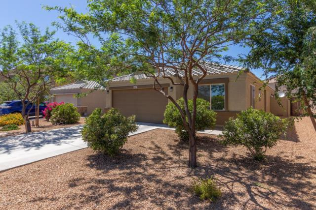 4582 E Jadeite Drive, San Tan Valley, AZ 85143 (MLS #5941774) :: The Bill and Cindy Flowers Team