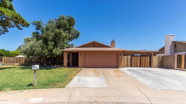 2254 W Saint Moritz Lane, Phoenix, AZ 85023 (MLS #5941783) :: Revelation Real Estate
