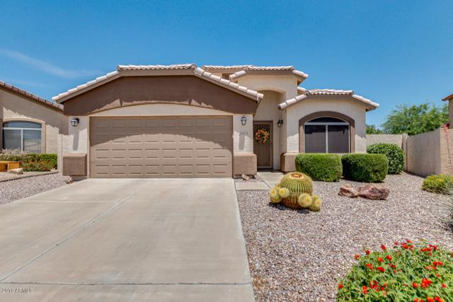16222 N 162nd Drive, Surprise, AZ 85374 (MLS #5941790) :: Occasio Realty