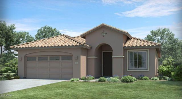 4034 E Madre Del Oro Drive, Cave Creek, AZ 85331 (MLS #5941793) :: The Bill and Cindy Flowers Team