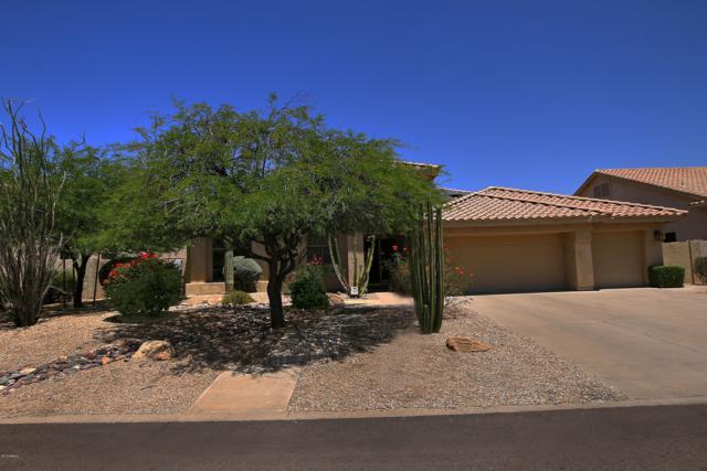 12584 E Jenan Drive, Scottsdale, AZ 85259 (MLS #5941807) :: The Kenny Klaus Team