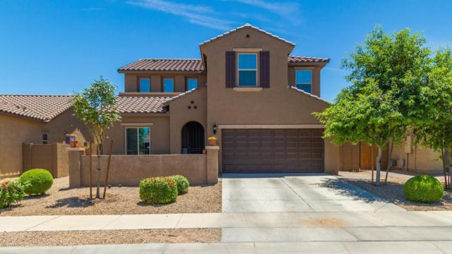 17731 W Hadley Street, Goodyear, AZ 85338 (MLS #5941808) :: Riddle Realty