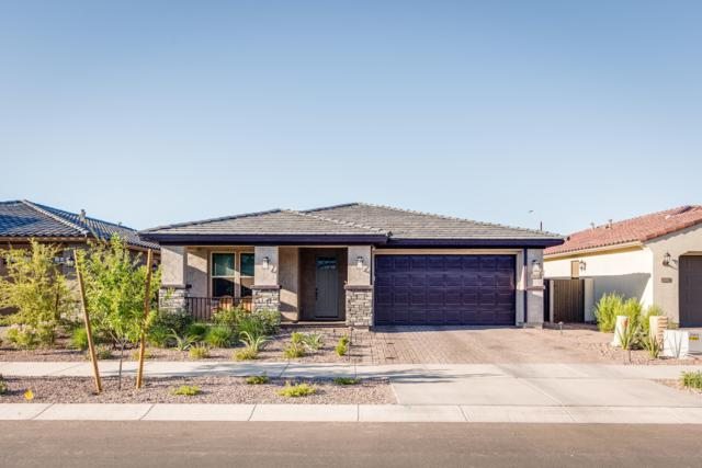 10631 E Wavelength Avenue, Mesa, AZ 85212 (MLS #5941809) :: The Bill and Cindy Flowers Team