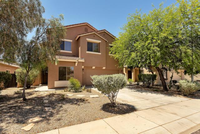17265 W Maui Lane W, Surprise, AZ 85388 (MLS #5941810) :: The Bill and Cindy Flowers Team