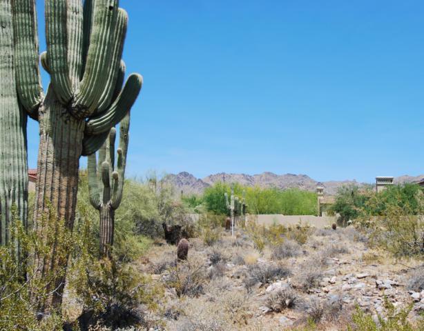 10024 E Siesta Lane, Scottsdale, AZ 85255 (MLS #5941811) :: Riddle Realty