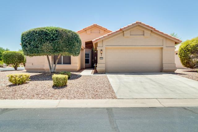 3397 N 159TH Avenue, Goodyear, AZ 85395 (MLS #5941816) :: Kortright Group - West USA Realty