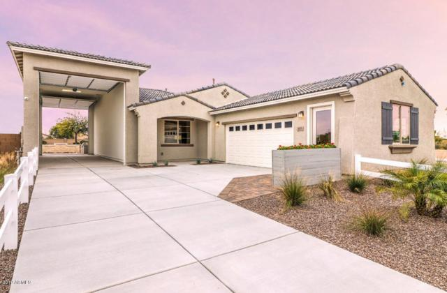653 W Rambler Court, Casa Grande, AZ 85122 (MLS #5941831) :: Occasio Realty