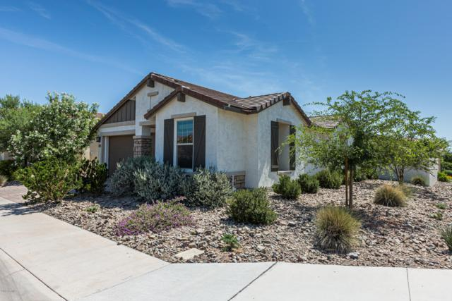 5253 S Cobalt, Mesa, AZ 85212 (MLS #5941838) :: The Bill and Cindy Flowers Team