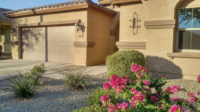 1823 S 237TH Avenue, Buckeye, AZ 85326 (MLS #5941842) :: The Property Partners at eXp Realty