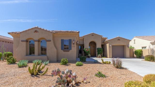 17983 W Willow Drive, Goodyear, AZ 85338 (MLS #5941878) :: Homehelper Consultants