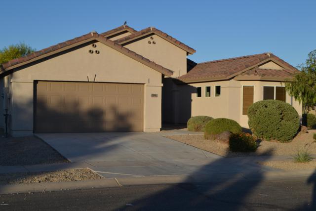 150 S Lucia Lane, Casa Grande, AZ 85194 (MLS #5941883) :: Occasio Realty