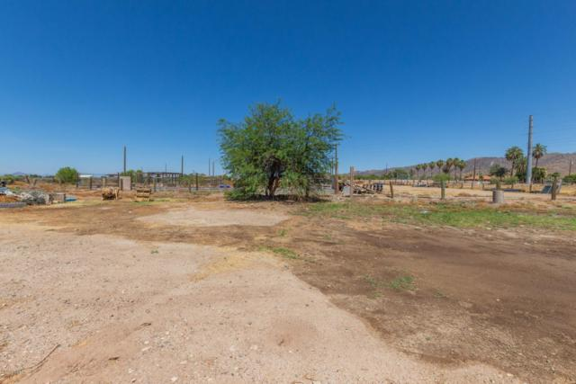 9029 S 19TH Avenue, Phoenix, AZ 85041 (MLS #5941887) :: The Bill and Cindy Flowers Team