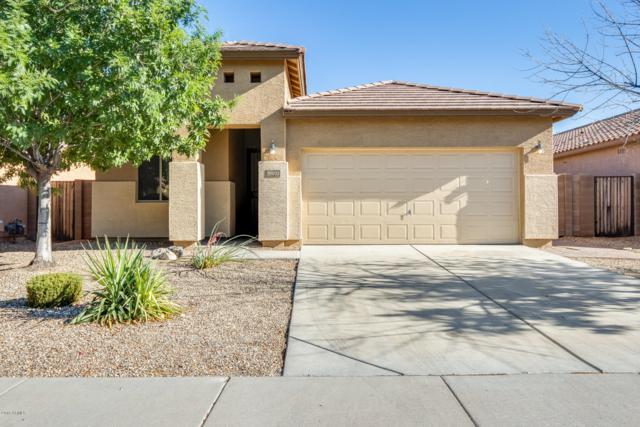 18031 W Vogel Avenue, Waddell, AZ 85355 (MLS #5941893) :: Occasio Realty