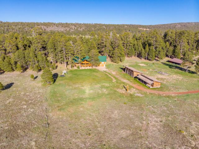 482 W Lake Shore Drive, Mormon Lake, AZ 86038 (MLS #5941896) :: Occasio Realty