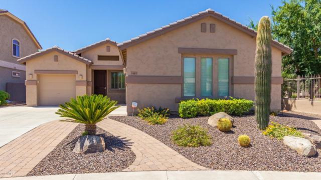 5445 W Red Bird Road, Phoenix, AZ 85083 (MLS #5941897) :: Occasio Realty