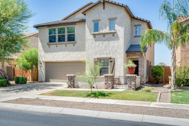 7373 W Monte Cristo Avenue, Peoria, AZ 85382 (MLS #5941915) :: The Laughton Team