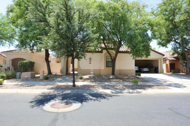 921 W Elm Street, Litchfield Park, AZ 85340 (MLS #5941916) :: Openshaw Real Estate Group in partnership with The Jesse Herfel Real Estate Group