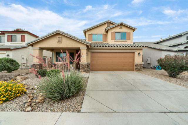 411 N 167TH Drive, Goodyear, AZ 85338 (MLS #5941917) :: Riddle Realty