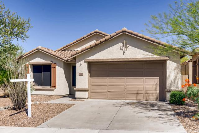 3752 W Denali Drive, Anthem, AZ 85086 (MLS #5941923) :: The Daniel Montez Real Estate Group