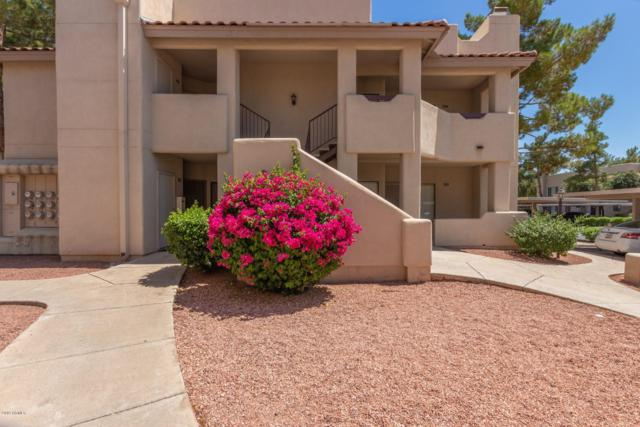 750 E Northern Avenue #2058, Phoenix, AZ 85020 (MLS #5941925) :: Homehelper Consultants