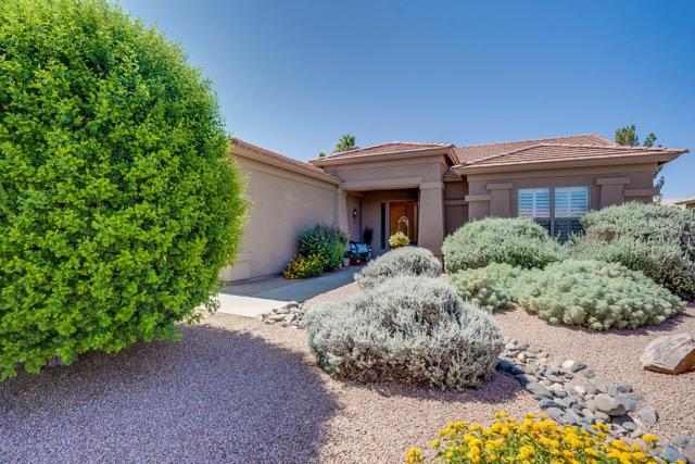 1033 E Buena Vista Drive, Chandler, AZ 85249 (MLS #5941927) :: Lucido Agency
