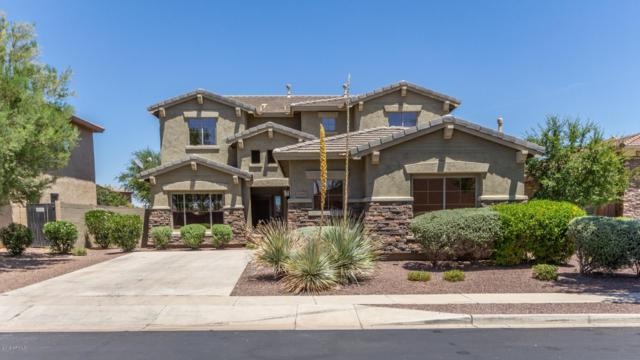 26447 N 167TH Avenue, Surprise, AZ 85387 (MLS #5941940) :: Occasio Realty