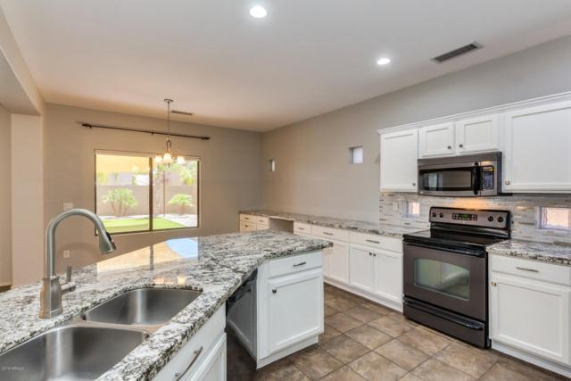 16319 N 168TH Drive, Surprise, AZ 85388 (MLS #5941943) :: Lucido Agency