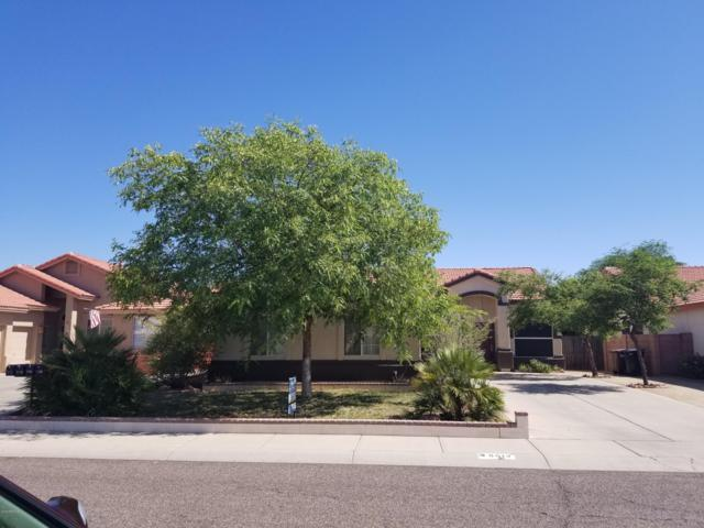 8613 W Aster Drive, Peoria, AZ 85381 (MLS #5941971) :: Lucido Agency