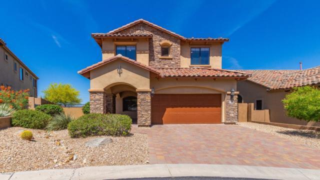 3408 N Sonoran Hills Hills, Mesa, AZ 85207 (MLS #5941973) :: Riddle Realty