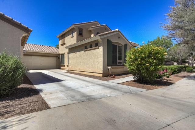 21083 E Munoz Street, Queen Creek, AZ 85142 (MLS #5941981) :: Occasio Realty