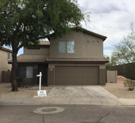 6057 W Odeum Lane, Phoenix, AZ 85043 (MLS #5941986) :: Riddle Realty