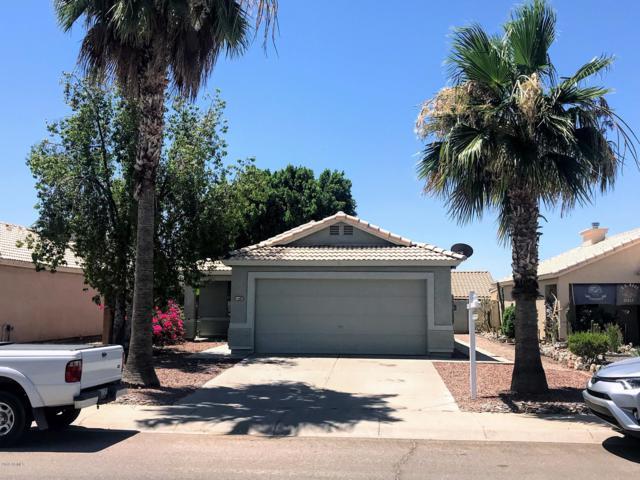 2151 W 21ST Avenue, Apache Junction, AZ 85120 (MLS #5941989) :: Lucido Agency